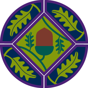 young-leaders-scheme-complete-badge-png